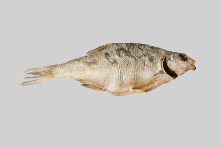Dried fish bream.  Isolated on a gray background.