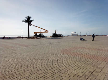Installation of artificial palm trees on the waterfront. Kazakhstan. Aktau city. March 26, 2019 year.