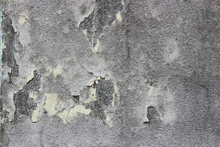 peeling paint: peeling paint