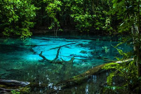 clarifier: Emerald Pool at Krabi in Thailand.