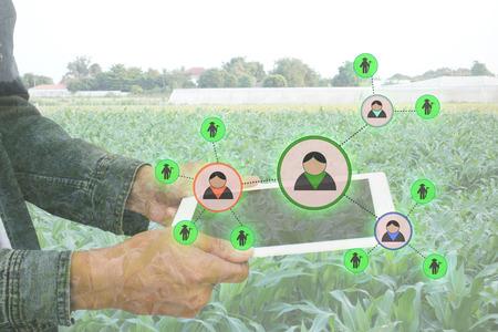 cultivo de trigo: Internet de las cosas concepto de la agricultura, la agricultura inteligente, el uso agricultor aumentada aplicación de realidad para gestionar un recurso humano en la granja Foto de archivo
