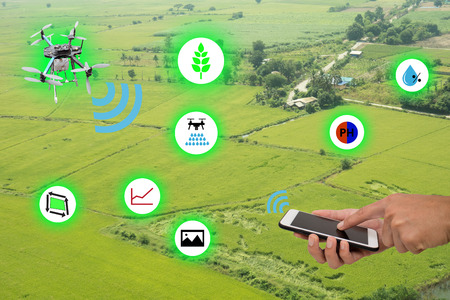 internet of things(industrial agriculture and smart farming concept),farmer hold the tablet with application for use drone for keeping,monitoring and controling the data in the field