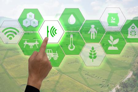 Internet van dingen (landbouwconcept), slimme landbouw, industriële landbouw. Gebruiker wijst hand om de geavanceerde realiteitstechnologie te gebruiken om toezicht te houden op en monitoren in het veld. Stockfoto