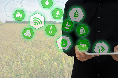 Internet of things(agriculture concept),smart farming,industrial agriculture.Farmer hold the tablet and to use augmented reality technology to control ,monitor and management in the field Foto de archivo