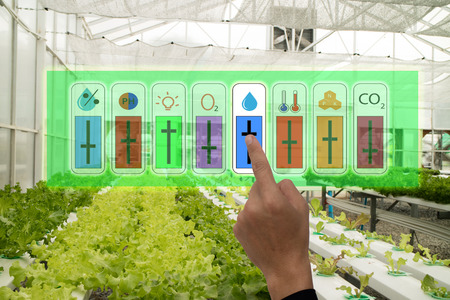 internet of things industrial agriculture and smart farming concept,farmer point hand to use augmeted reality application to control monitor and controlling conditon of vegetable in the greenhouse
