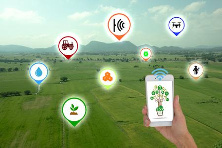 Internet van dingen (landbouwconcept), slimme landbouw, slimme landbouw. De boer maakt gebruik van applicatie in de telefoon om de conditie te controleren en te bewaken door draadloos sensorsysteem in het landbouwveld