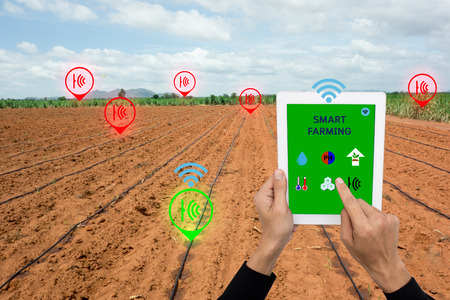 Internet of things(argiculture concept),smart farming, smart agriculture.The farmer using application in taplet to control and monitor the condition by wireless sensor system in the agriculture field Banco de Imagens