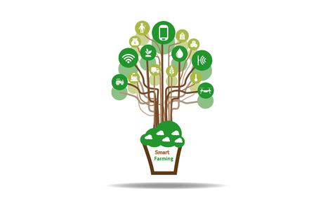 Internet des objets (concept de l'agriculture), agriculture intelligente, agriculture intelligente.Icon de l'agriculture intelligente, illustration Banque d'images - 72258609