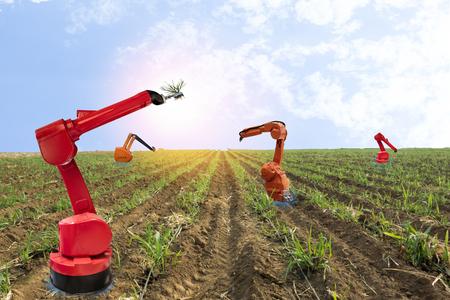 iot, 사물의 인터넷, 농업 개념, 농부는 농장에서 일하는 똑똑한 농장 로봇 조수를 사용하여 잡초를 탐지하고 작업자를 대체하기 위해 화학 사용 로봇을 스톡 콘텐츠