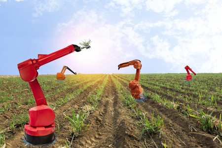 iot, internet of things, agriculture concepts, Farmer use smart farm robot assistant to work in the farm , to detect the weed ,spray the chemical use robot for replace worker and increase efficiency Banco de Imagens