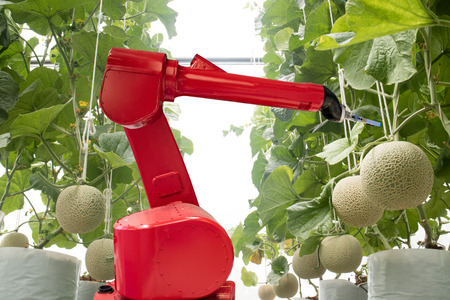 agritech technology concept, robot use in smart farming or agriculture for aim of improving yield, efficiency, and profitability.it can be products, services or improve various input/output processes. Banco de Imagens - 86500667
