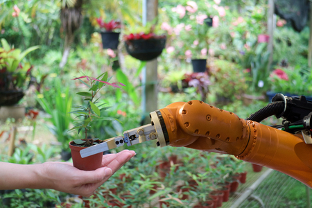 robot hand give the tree in the flowerpot in the greenhouse to hand , robot work with human in the smart farm, agriculture, the robotic technology aim to improving yield, efficiency, profitability