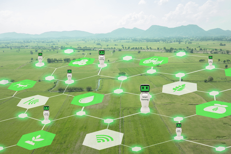 iot, internet of things, agriculture concept, Smart Robotic (artificial intelligence ai) use for management , control , monitoring, and detect with the sensor in the farm, field.