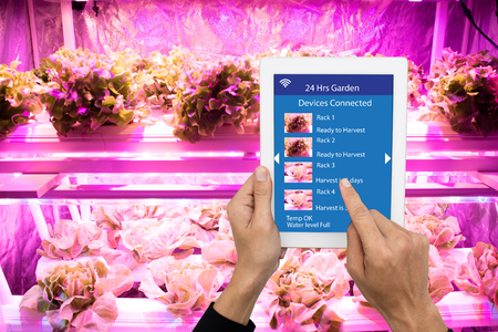 smart agriculture in futuristic concept, farmer use technology to monitor, control and adjustment led, atmosphere,humidity, water level and keep tracking harvesting time in vertical or indoor farming