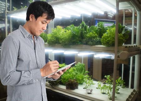 미래 지향적 인 개념의 스마트 농업, 수직, 실내 농장에서 수확 시간 추적 및 추적, 대기, 습도 모니터링, 제어 및 조정을위한 농부 기술 사용 스톡 콘텐츠 - 87117740