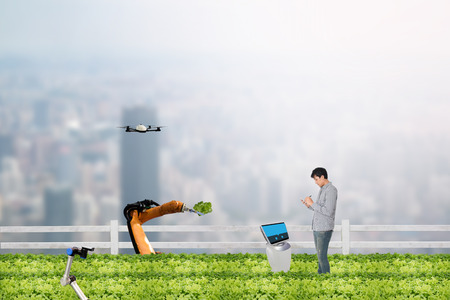 smart farming concept, Agronomist or Farmer work in the urban or vertical farm with robot (artificial intelligence) and check,management, monitor keep data analysis in each day in the agriculture farm Stock Photo