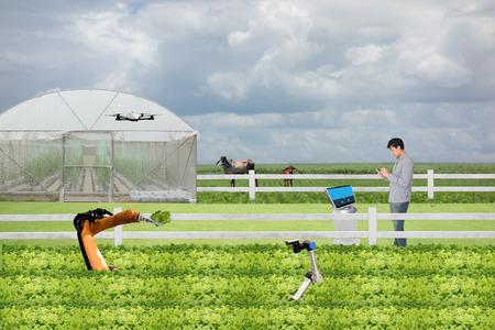 concepto de agricultura inteligente, Agrónomo o Agricultor trabajan en la granja con robot (inteligencia artificial) y controlan, administran, monitorean y mantienen el análisis de datos en cada día