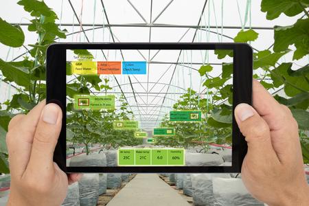 Il concetto dell'agricoltura intelligente, l'agronomo o l'agricoltore utilizzano l'intelligenza artificiale e la realtà aumentata nelle fattorie per aiutare a far crescere i sistemi, risparmiare acqua, ridurre il tempo di lavoro, aumentare la resa e prevedere