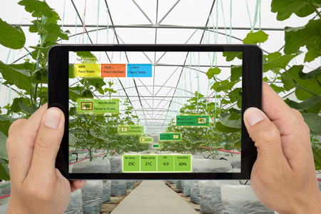 Smart agriculture concept, Agronomist or farmer use Artificial intelligence and augmented reality in farm to help grow systems, saving water ,resources reduce labor time, make high yield and predict