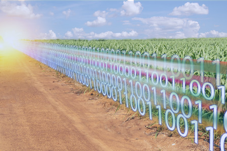 Iot smart industry 4.0 digital transformation with artificial intelligence or AI in agriculture concept