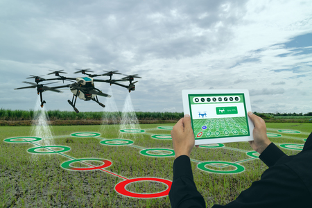 smart agriculture industry 4.0 concept, drone (in precision farm) use for spray a water, fertilizer or chemical to the field, farm for growth a yields,crops, use for control, kill the bug or weed