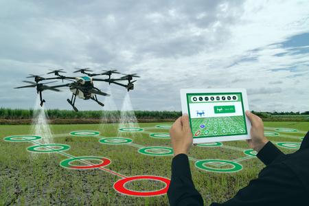 Smart Agriculture Industry 4.0-Konzept, Drohne (in der Präzisionsfarm) zum Sprühen von Wasser, Dünger oder Chemikalien auf das Feld, Farm für Wachstum und Ertrag, Ernte, Verwendung zur Kontrolle, Abtötung des Insekts oder Unkrauts Standard-Bild