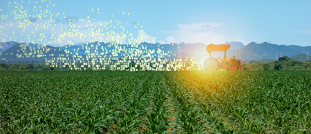 iot smart farming, agriculture in industry 4.0 technology with artificial intelligence and machine learning concept. it help to improve, categorized, specified goal, solve problem, keep goal, predict Stock Photo