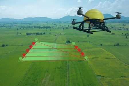 concepto de agricultura inteligente, el dron utiliza una tecnología en la agricultura con inteligencia artificial para medir el área, el fotógrafo y la mosca siguen la línea y envían los datos al agricultor en el sistema de nube