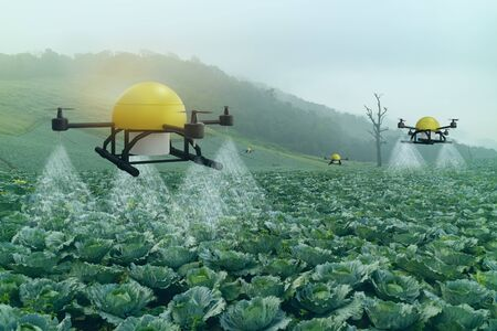iot smart agriculture industry 4.0 concept, drone (in precision farm) use for spray a water, fertilizer or chemical to the field, farm for growth a yields,crops, use for control, kill the bug or weed