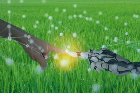 human work with robots in smart agriculture concept with machine, deep learning, neural network technology, the artificial intelligence network in smart farm to disrupt