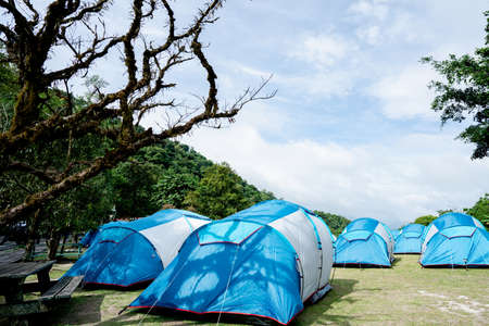 The blue tent was spread on the grassland. In the national park