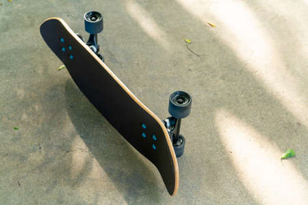 A black Surf Skate has a black top and black wheels resting on a cement floor in a garden.