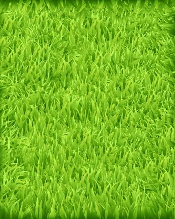 緑の芝生  イラスト・ベクター素材