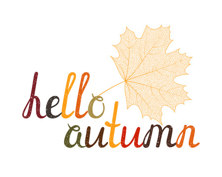 The inscription Hello autumn with skeleton autumn maple leaf. Hand-written letters are painted in autumn colors. Can be used for banner, card, t-shirt, postcard, poster etc. Vector illustration.