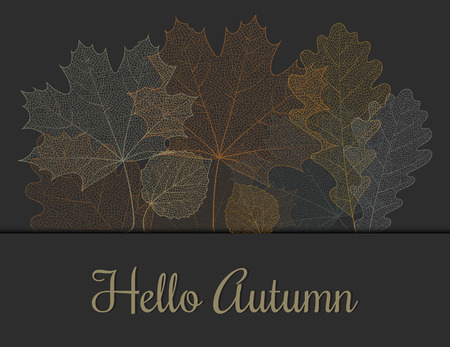 Autumn invitation or greeting card from skeletons of leaves. Vector template for banner, card, background etc. Vector illustration.