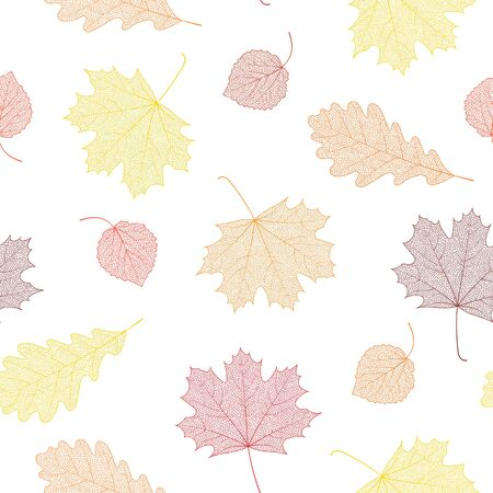 Seamless autumn pattern from skeletons of leaves. Vector illustration for banner, card, background, textile, paper packaging, wrapping paper, scrapbooking, wallpaper and textile. Vector illustration. Иллюстрация