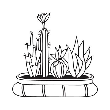 Kakteen mit Blumen im Topf für Malbücher. Lustiger süßer Kaktus mit schwarzer Kontur. Mexikanische Pflanze. Gestaltungselement für Banner, Postkarte, Grußkarte, T-Shirt. Vektor-Illustration.