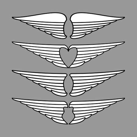 Vector of wings in grey background