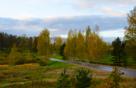 curving: curving autumn road in the far distance