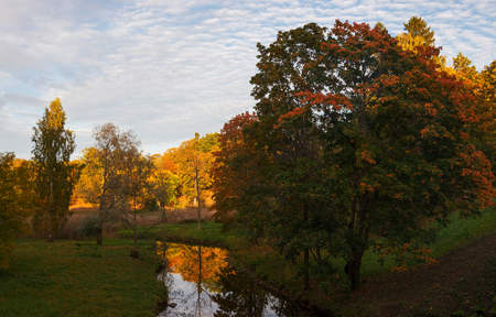 Park in red and orange colors of the autumn season.