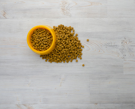 Cat food in bowl and on wood background
