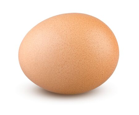 Egg Isolated. Chicken Egg on White Background. Highly Retouched Closeup. Full Depth of Field. Single Brown Egg Absolute Sharpness High Resolution and Quality Image. 版權商用圖片