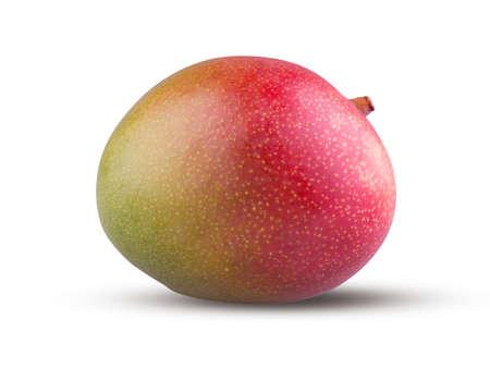 Whole mango isolated on white background. Red mango fruit close up. Fresh and tasty sweet exotic fruit. Shiny beautiful ripe mango. Healthcare, nutrition and cooking concept
