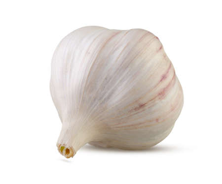 Garlic isolated on white background. High resolution, excellent retouching and full depth of field Stock Photo