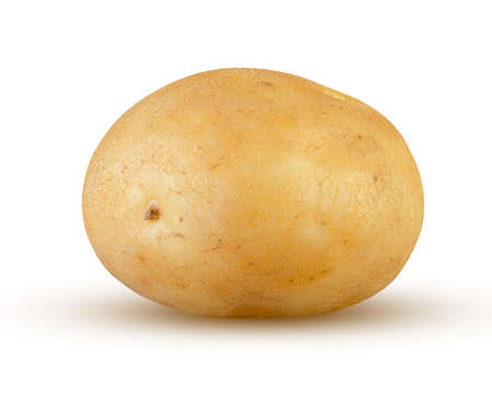 Young fresh potato isolated on white. Excellent quality and detail. Intact single potato starch. Organic food, agriculture harvest and cooking concept Stock Photo