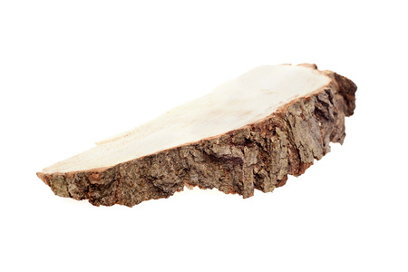 saw cut of a tree on a white background Stock Photo
