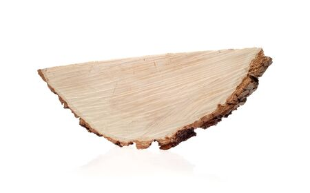 saw cut of a tree on a white background Stock Photo - 56032571