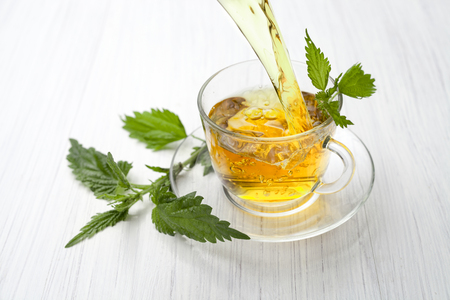 formic: herbal tea with nettle
