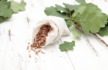 quercus robur: oak bark in a canvas bag with branches of oak