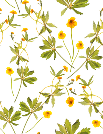 Seamless floral pattern with plants on a white background. Background image.